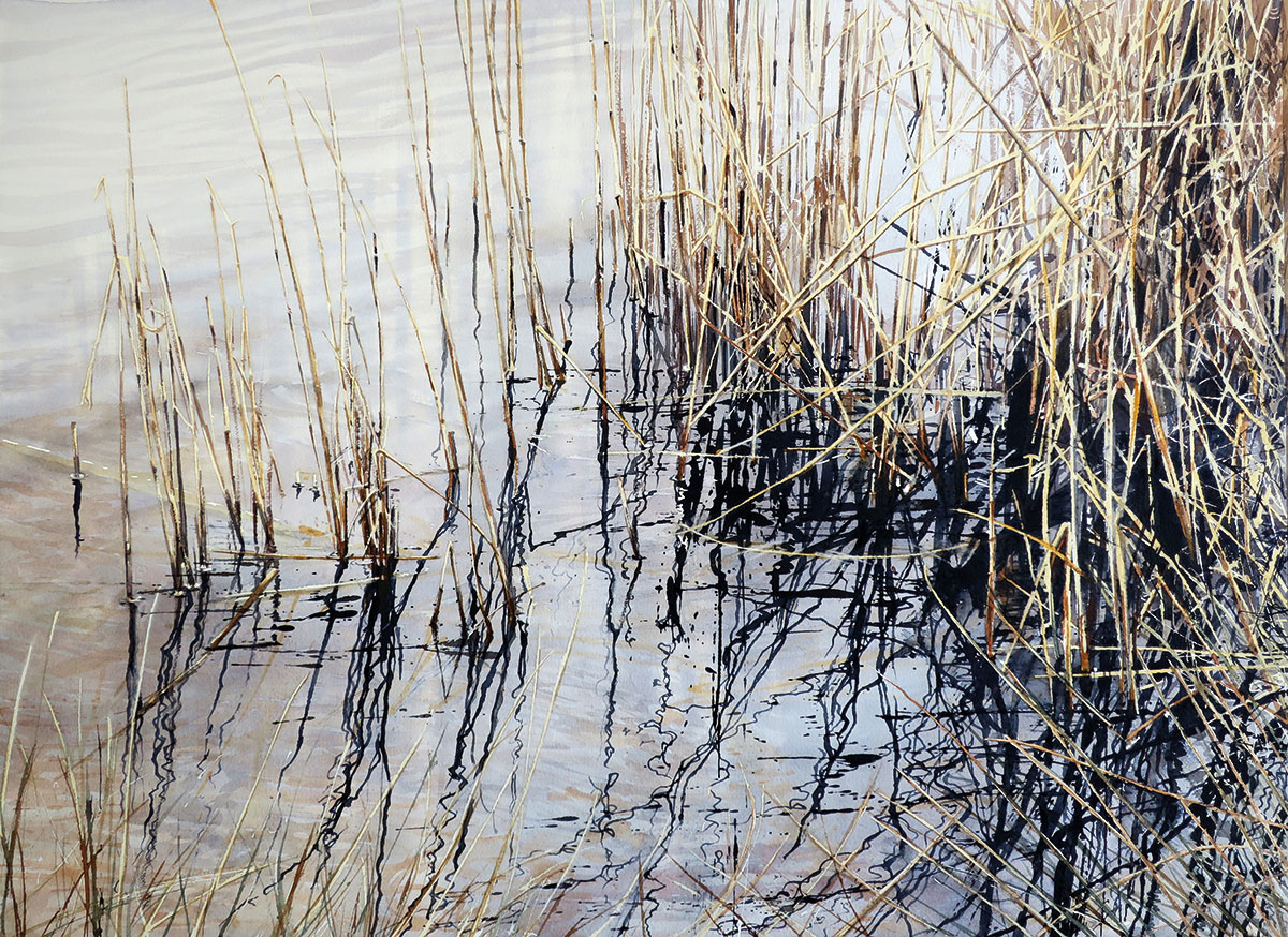 Royal Institute of Painters in Water Colours 208th Exhibition