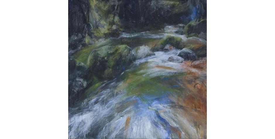 Sarah Bee River Plym Dartmoor