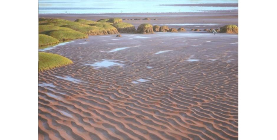 Sand_ripples_1.jpg