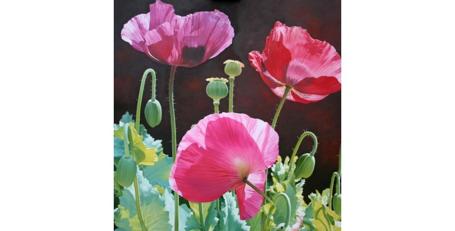Alexander-Linda-Poppy Garden.jpg