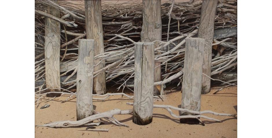 Brushwood Fence (2) (1024x698).jpg