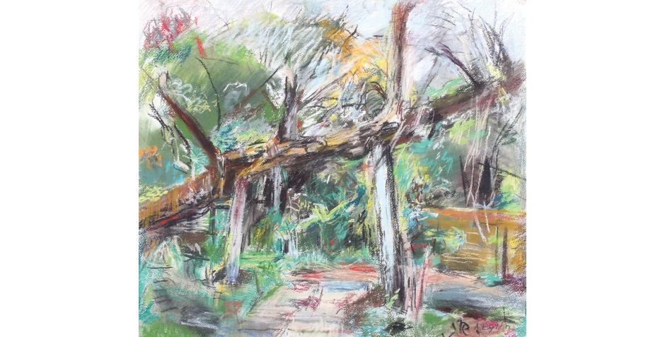 Anthony Eyton, The Fallen Tree