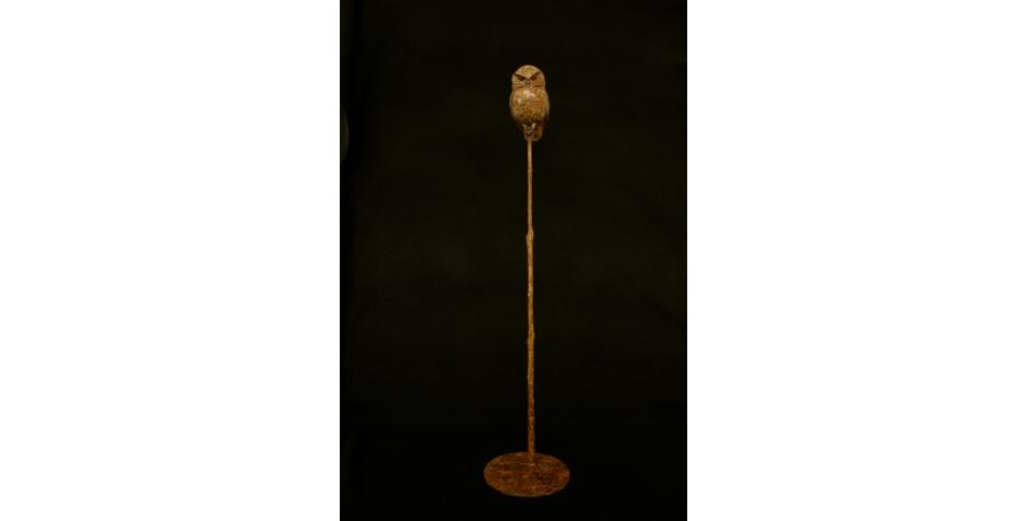 Little Owl II_2.jpg