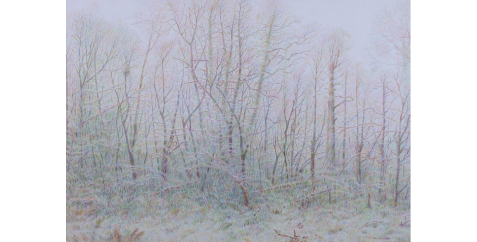 Warden_Peter_The-Old-Coppice.jpg
