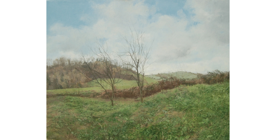 frood-caroline-view-over-the-hedge.jpg