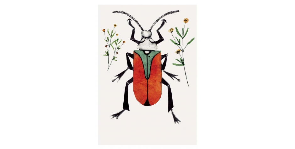 WEB-Forshall-Bea-Scarlet-Malachite-Beetle.jpg