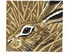 Bartlett-Vanna-Brown Hare.jpg