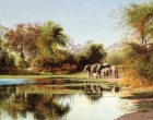 1._Reflections_of_Africa_32_x_46_cm_watercolour_1.jpg