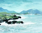 Donovan-Patrick R-Llandwyn Island Anglesey.jpg