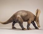 aardvark-sculpture-1.jpeg