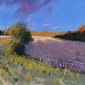 Allain-Tony-Rabbit-Field-Glenturret.jpg
