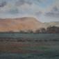 Allbrook-Colin-Evening-Taw-Valley.jpg