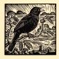 Allen-Richard-Blackbird.jpg