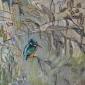 Andrew-Laura-Kingfisher-In-Willow.jpg