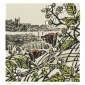 Angus-Max-Red-admirals--Burnham-Thorpe.jpg