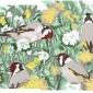 Sinden-Chris-Goldfinches-2.jpg