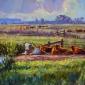 King-Andrew-Cattle-Halvergate-Marshes.jpg