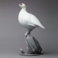02-BIBBY-NICK-PTARMIGAN.jpeg