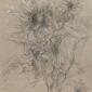 Armfield-Diana-Growing-Sunflowers.jpg