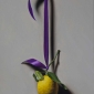 Baccanello-Maximillion-Hanging-Lemon.jpg