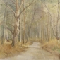 Banning-Paul-The-Road-to-Frensham-pond-wc--x--inches.jpg