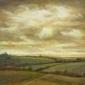 Boisseau-Annie--Under-Wild-Skies.jpg