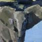Dobbs-John-Elephant-Calf.jpg