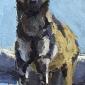 Dobbs-John-Standing-Wild-Dog.jpg