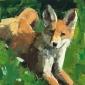 Dobbs-John-Urban-Fox.jpg