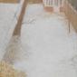 Draper-Genevieve-Winter.jpg
