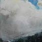 Dudman-Sara-Fulmars-and-Gannets-Bempton-Cliffs-2.jpg