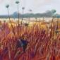 Edwards-Brin-Swallow-Field---Onions-And-Barley.jpg