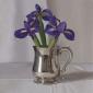 Galton-Jeremy-Irises-in-Pewter-Jug.jpg