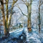 Glass-Margaret-Winter-Sun-Needham-Lakes.jpg