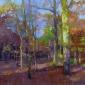 Goodman-Sheila-Enclosure.jpg