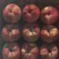Gould-David-First-study-of-nine-apples1.jpeg