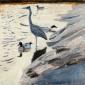 Greenhalf-Robert-Heron-and-Shelducks.jpg