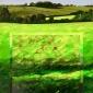 Hunt-Tony-Sunlit-Field-Shepherds-Down.jpg
