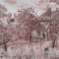 Berry–June-The Abandoned Garden.jpg