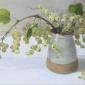 Calvert-Diana-White Currants.jpg