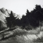 Petterson-Melvyn--Pryenees-Sun-Drypoint-2014.jpg