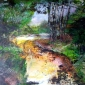 Li-Amber-The-River-54cm-x-56cm-Mixed-media.JPG
