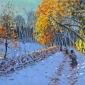 Macara-Andrew-Snowballers-Allestree-Park-Derby.jpg
