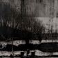 Maczkowski-Alex-Remnant.jpg