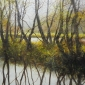 Brammeld-David-Winter-Reflections.jpg