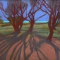 Campion-Sue-Long-Tree-Shadows.jpg