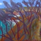 Campion-Sue-The-Gorge,-Stradbroke-Island.jpg