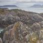 Mulcahy-Bruce-Rocky-Coast-Near-Mallaig.jpg
