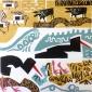 Poole-Greg-Oystercatchers-starlings-&-dunlin.jpg
