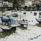 Yardley-John-Low-Tide-St-Aubyn-36-51.jpg